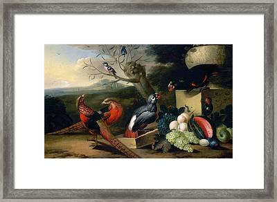 Framed Print featuring the digital art Exotic Birds by Tobias Stranover