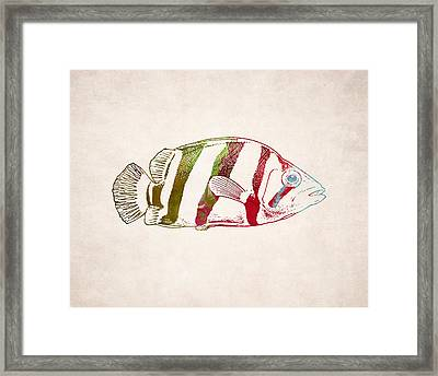 Exotic Fish Drawing Framed Print by World Art Prints And Designs
