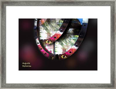 Exotic Flowers In Reflections Framed Print by Augusta Stylianou
