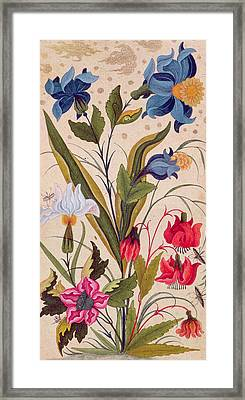 Exotic Flowers With Insects Framed Print