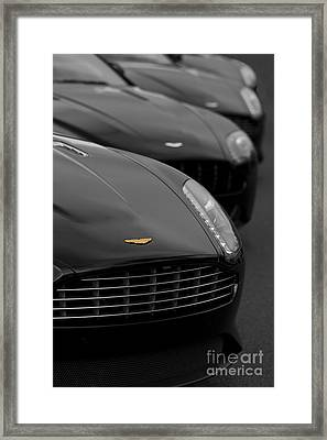 Exotic Lineup Framed Print