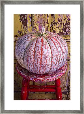 Exotic Pumpkin Framed Print