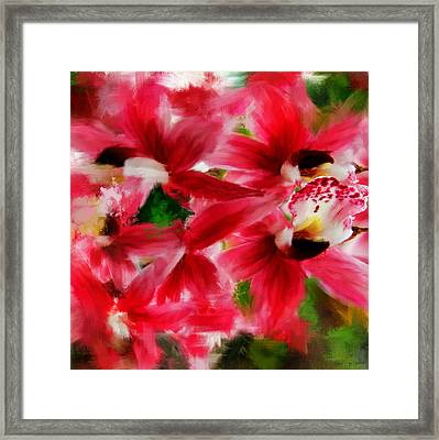 Exotically Pink Framed Print