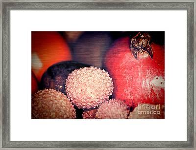 Exotique 2 Framed Print by Steve Purnell