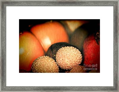 Exotique 3 Framed Print