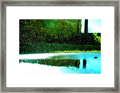 Expanded Impact Framed Print by Julie Shiroma