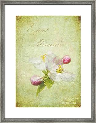 Expect Miracles Framed Print by Kathi Mirto