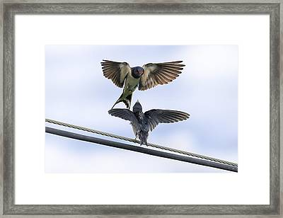 Expecting Me To Be Fed Framed Print