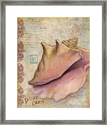 Expedition Shell IIi Framed Print