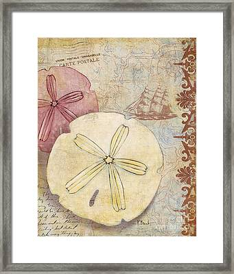 Expedition Shell Iv Framed Print