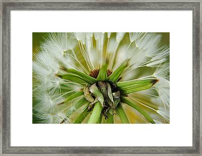 Expired Framed Print by Frozen in Time Fine Art Photography