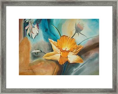 Exploding Floral Framed Print by John Norman Stewart