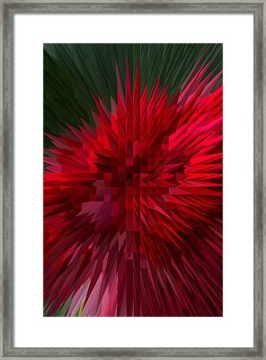 Exploding Rose Framed Print by Michael Moriarty