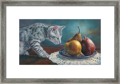 Exploring Framed Print by Lucie Bilodeau