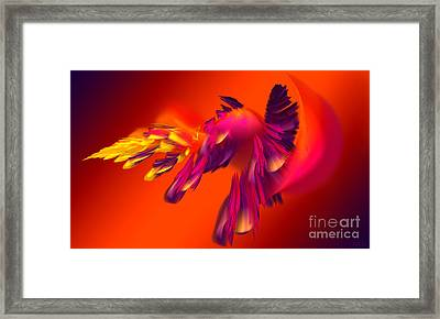 Explosion Of Hot Colors Framed Print