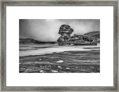 Exposed To Wind And Weather Framed Print