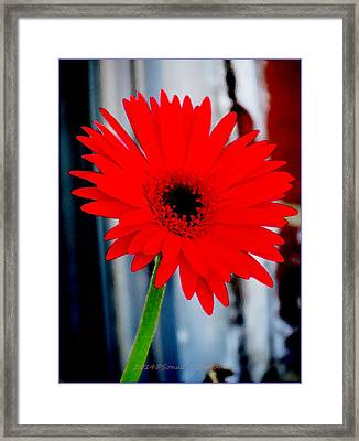Expression Of Love Framed Print by Sonali Gangane