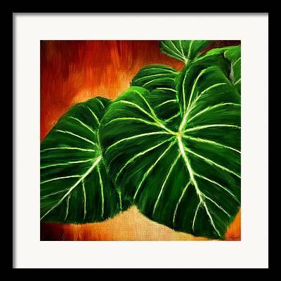 Indoor Plants Framed Prints