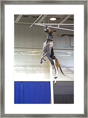 Extreme Vertical 6 Framed Print
