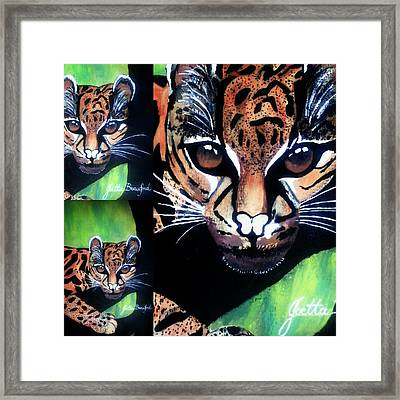 Eye Attraction Framed Print