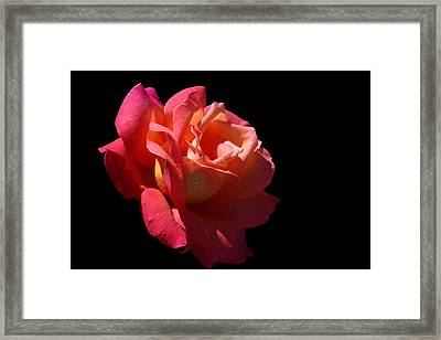 Framed Print featuring the photograph Eye Catcher by Doug Norkum