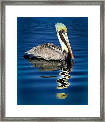 Eye Of Reflection Framed Print by Karen Wiles