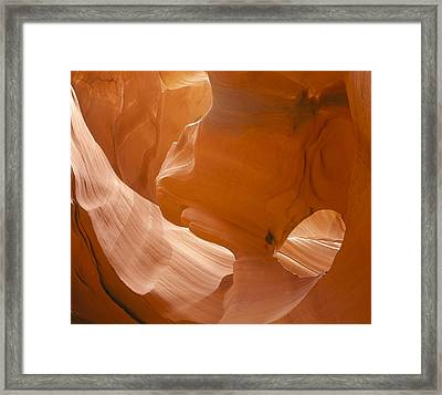 Eye Of The Eagle Horizontal Framed Print