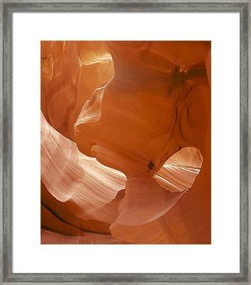 Eye Of The Eagle Vertical Framed Print