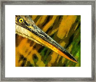 Eye Of The Heron Framed Print by Ernie Echols