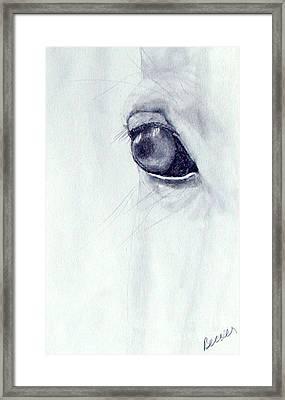 Eye Of The Horse Framed Print