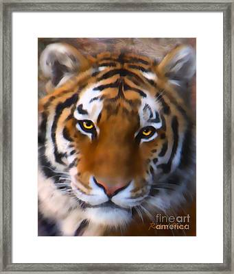 Eye Of The Framed Print