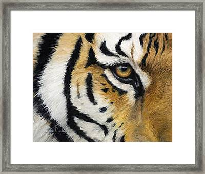 Eye Of The Tiger Framed Print by Lucie Bilodeau