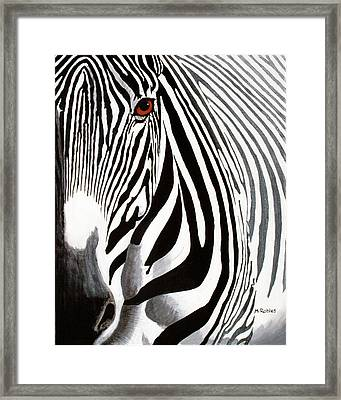 Eye Of The Zebra Framed Print by Mike Robles