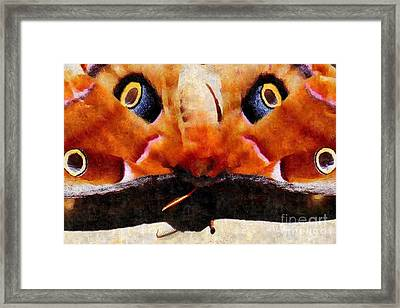 Eye On You - Silk Paint Framed Print by Anita Faye