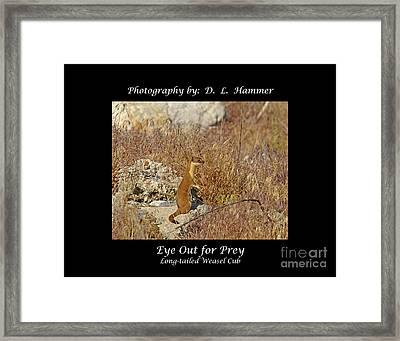 Eye Out For Prey Framed Print by Dennis Hammer