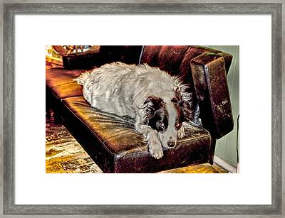 Eye Roll Framed Print