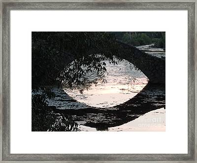 Eye See Colors Of A Lagoon At City Park In New Orleans Louisiana Framed Print