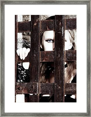 Eye See You From Behind The Bars Framed Print