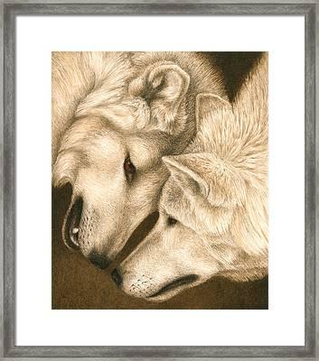 Eye To Eye Framed Print by Pat Erickson