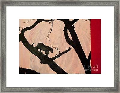 Eyeing The Panther Framed Print by Paulette B Wright