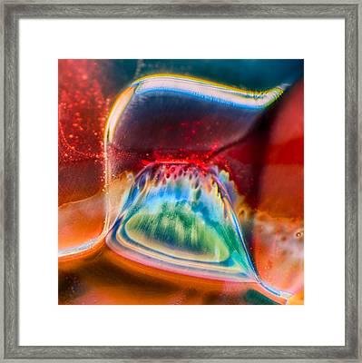 Eyeland Framed Print by Omaste Witkowski