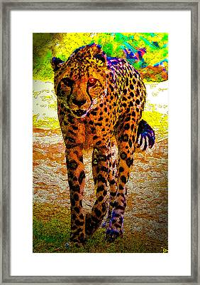 Eye Of The Huntress Framed Print by David Lee Thompson