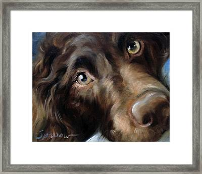 Eyes For You Framed Print