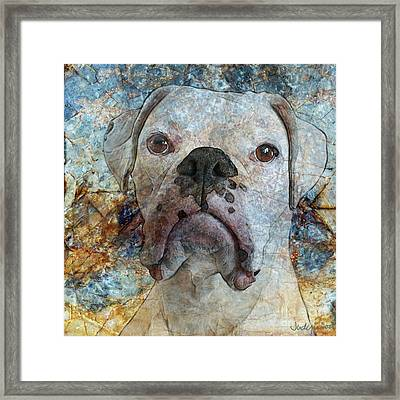 Eyes Front Framed Print by Judy Wood