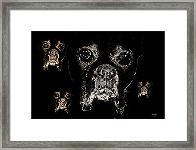 Eyes In The Dark Framed Print