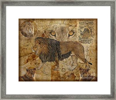 Eyes Of Africa Framed Print by Judy Wood