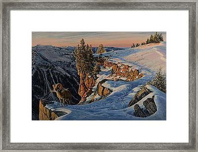 Framed Print featuring the painting Eyes Of The Canyon by Steve Spencer