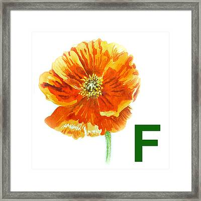 F Stands For Flower Art Alphabet For Kids Room Framed Print by Irina Sztukowski
