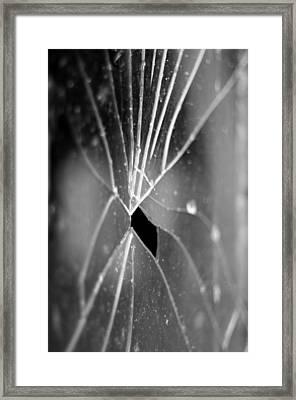 F1.4 Framed Print