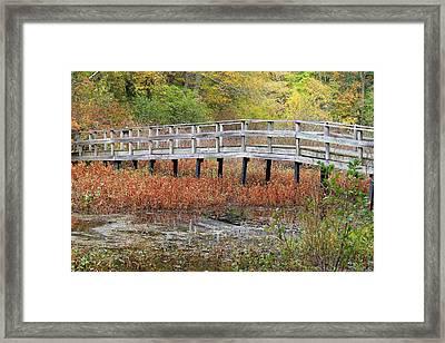 Fable Bridge Framed Print